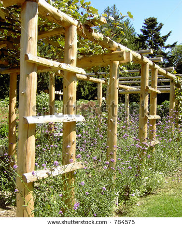 stylish garden trellises for your garden HZLPMSP