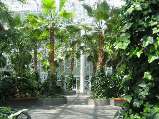 the best indoor gardens in chicago NTGAHTL