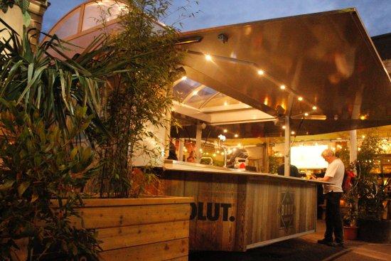 the botanic inn: boho garden bar XCQPILF