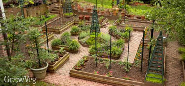 vegetable garden design how to design a potager