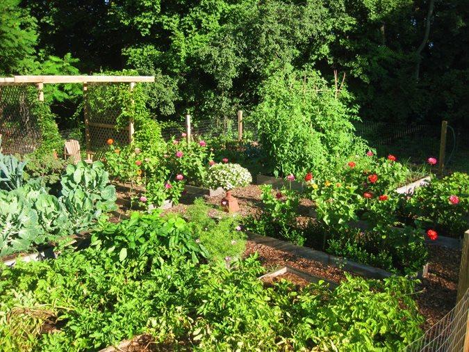vegetable garden design vegetable gardens garden design calimesa,