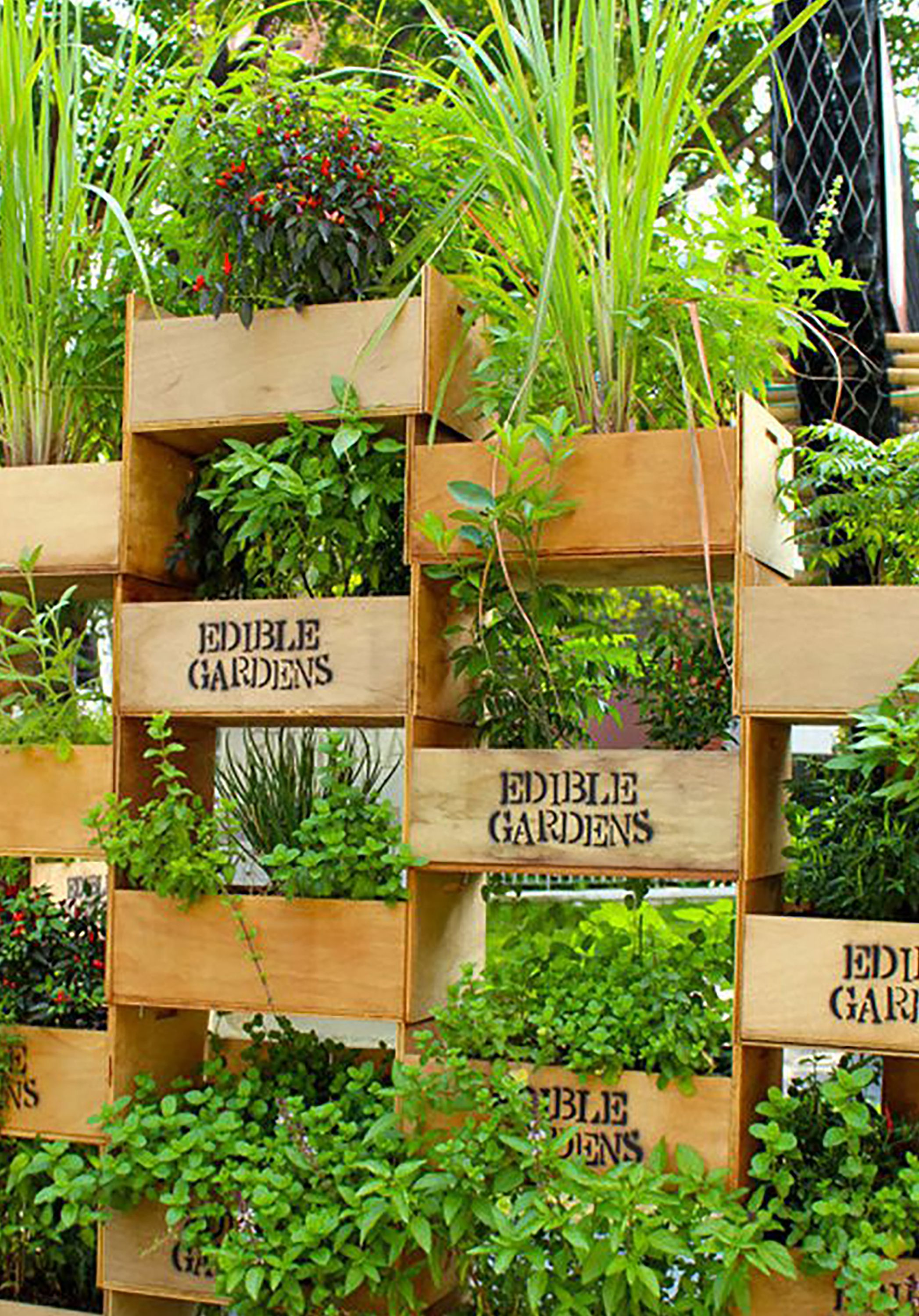 vertical garden ideas 26 creative ways to plant a vertical garden - how to make AEZIWZX