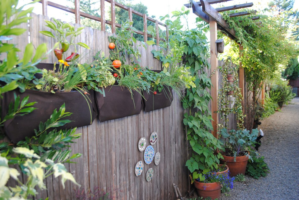 vertical garden ideas creative vertical gardening ideas NZQCCJR