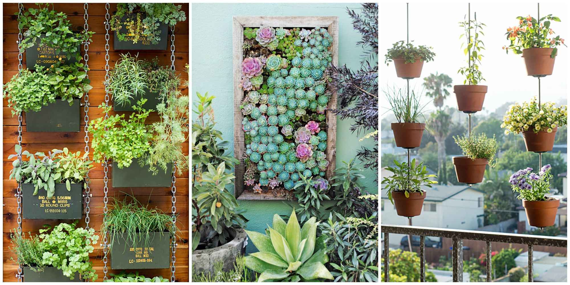 vertical garden ideas how to plant a vertical garden ZIKMCLK