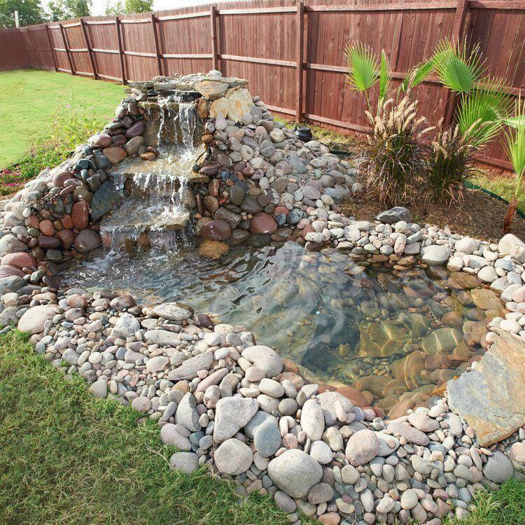 we know that a backyard pond with running water, floating plants and QXYLACN