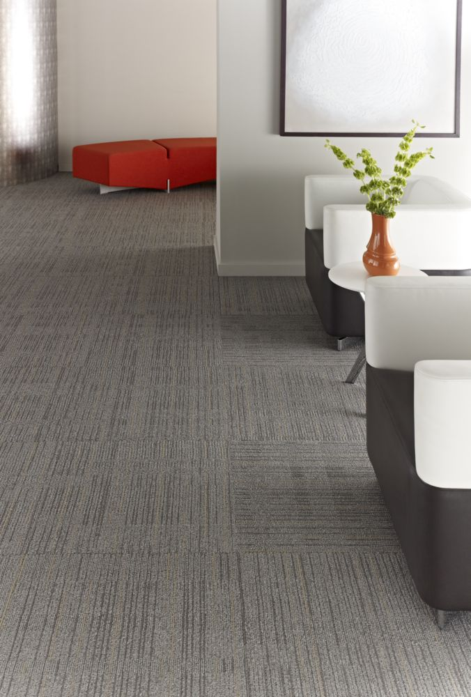 Immerse | J0187 | Philly Queen Commercial Carpet and Flooring