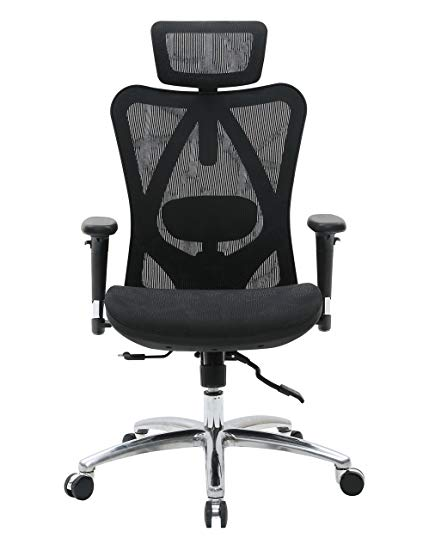 Amazon.com: Sihoo Ergonomic Office Chair, Computer Chair Desk Chair