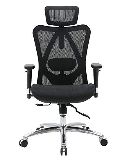 Amazon.com: Sihoo Ergonomic Office Chair, Computer Chair Desk Chair