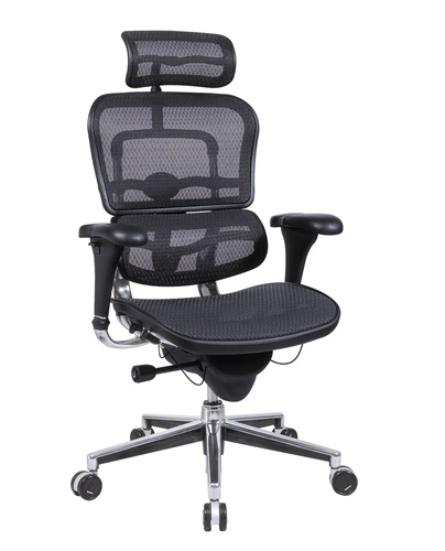 Eurotech Ergohuman ME7ERG Mesh Executive Chair with Headrest.
